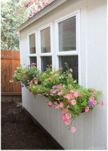 shed with flower boxes
